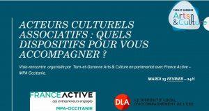 visio conf aide acteurs culturels